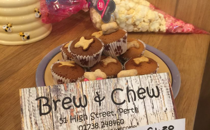 Great Coffee For You and Super Treats For Man's Bestfriend at Brew and Chew