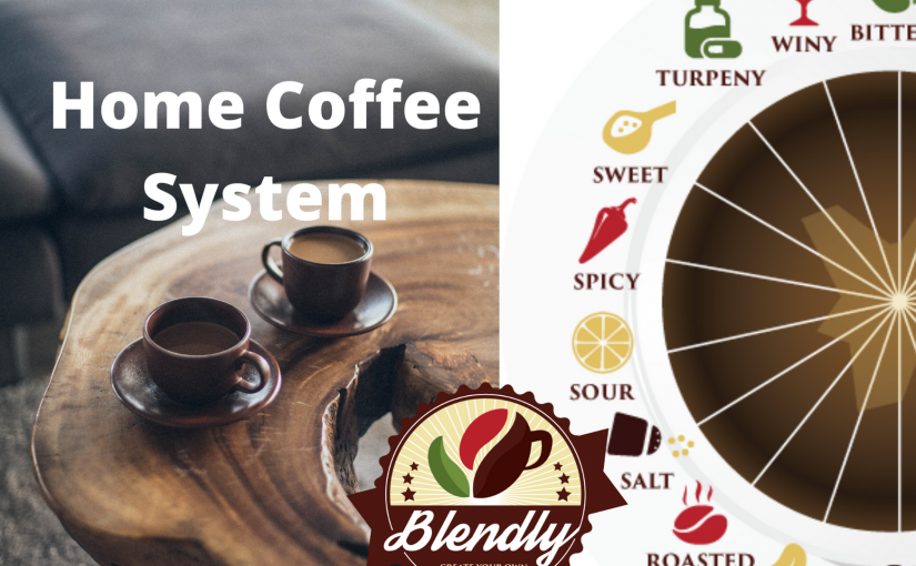 14 Reasons Why People Love Blendly for Home Coffee